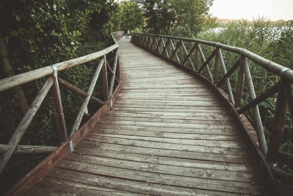 Puente camino